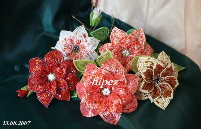 Цветы (за основу взята схема